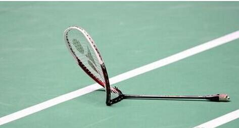 羽毛球拍品牌十大排行榜(羽毛球拍前二十名牌子)