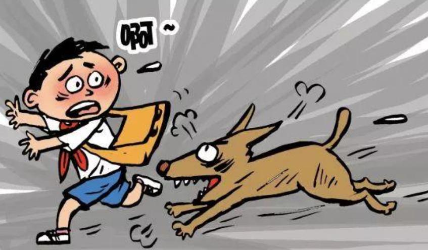 爱狗人士真恶心(什么原因导致的)