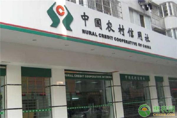 农村信用社贷款要什么条件(农村信用社贷5万要求)