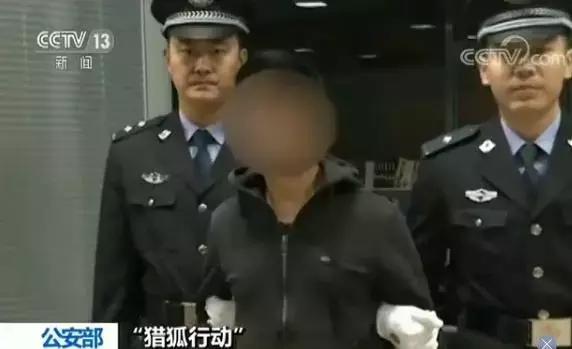 国际刑警组织发布的红色通缉令的有效期限为