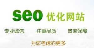 SEO技术:医疗网站seo优化教程