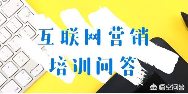 「实战」seo快速排名软件手机