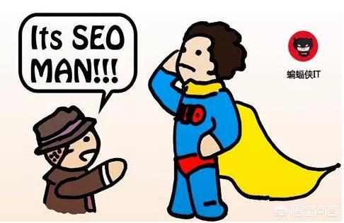 「搜道」seo快速排名找25火星软件