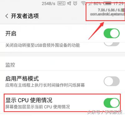 苹果的开发者选项在哪里打开(激活开发者模式的步骤)
